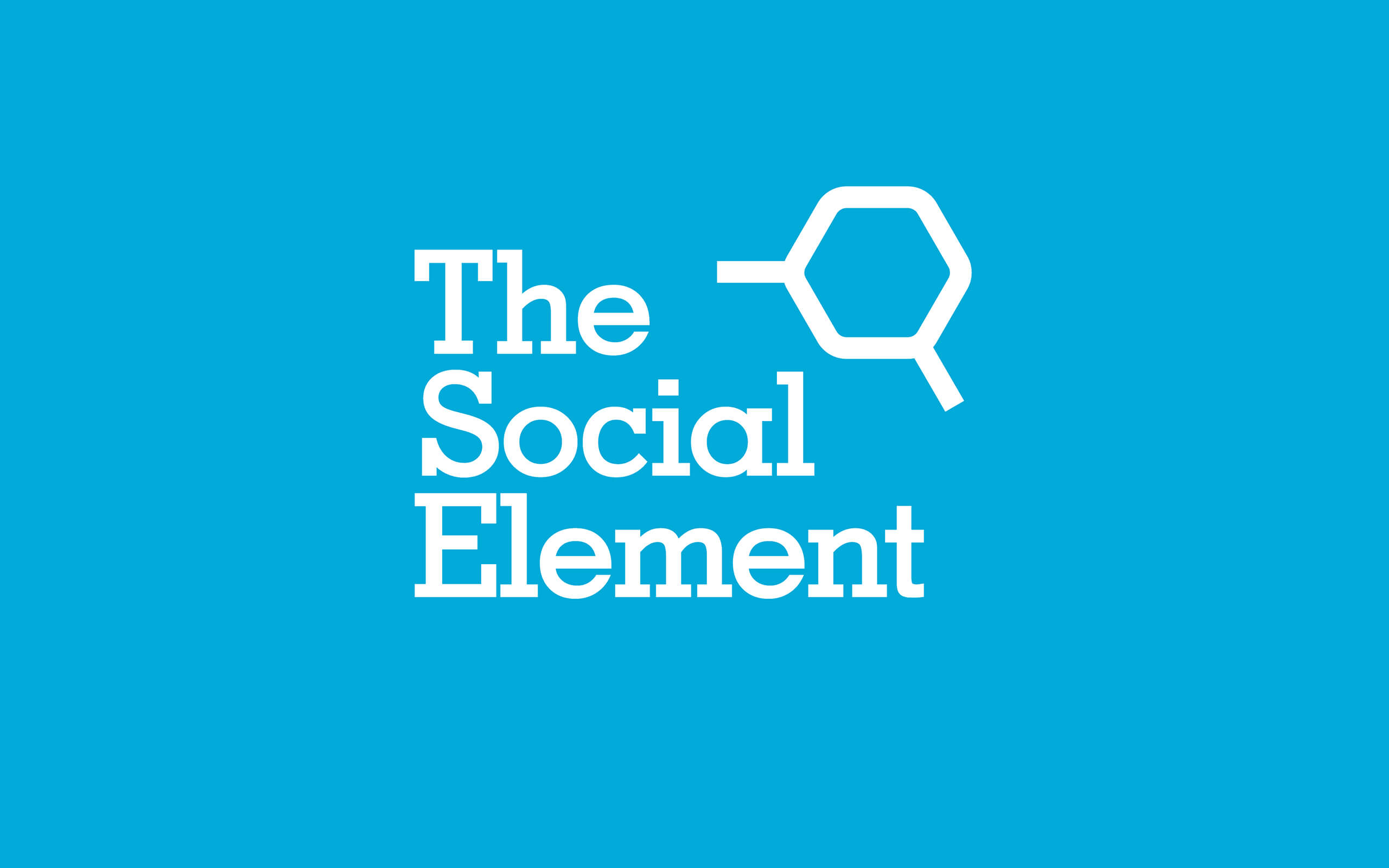 The Social Element brand main logo